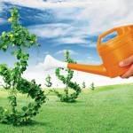 Земельный участок как залог для получения нецелевого кредита